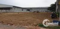 Bán đất mặt tiền, Đường Bình Chuẩn 63,TX.Thuận An, Bình Dương,Diện tích: 3.732m2