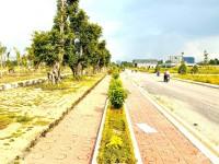 Đất nền liền kề chợ đầu mối Thủ Đức, Vĩnh Phú, dự án QI ISLAND