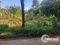 Cần bán 2 lô Đất xã Sông Thao, Trảng Bom, Đồng Nai
