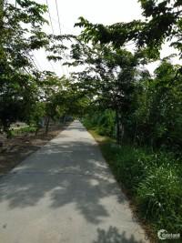 Cần tiền nên bán gấp 532m2 đất vườn Nhà Bè, shr, giá chỉ 720tr.