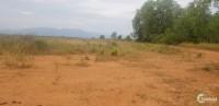 Chính chủ tôi cần tiền nên bán gấp lô đất 7000m2 ở thiện nghiệp, Phan Thiết