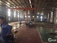 Cho thuê kho xưởng DT 1000m2 tại Phú Thị, Gia Lâm, Hà Nội.