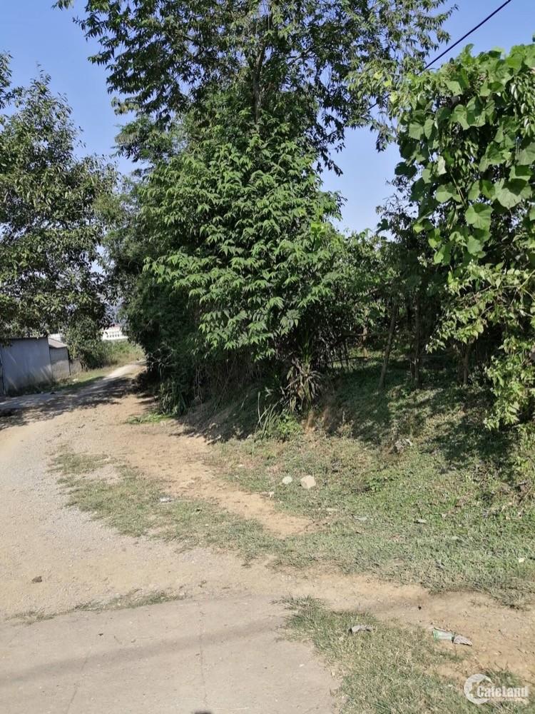 Bán đất thổ cư tại Lương Sơn Hoà Bình chính chủ