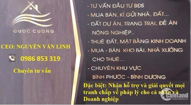 Bán đất trong KCN VSIP II,Vĩnh Tân, Tân Uyên,BD. Diện tích: 1ha, Giá: 130usd/m2