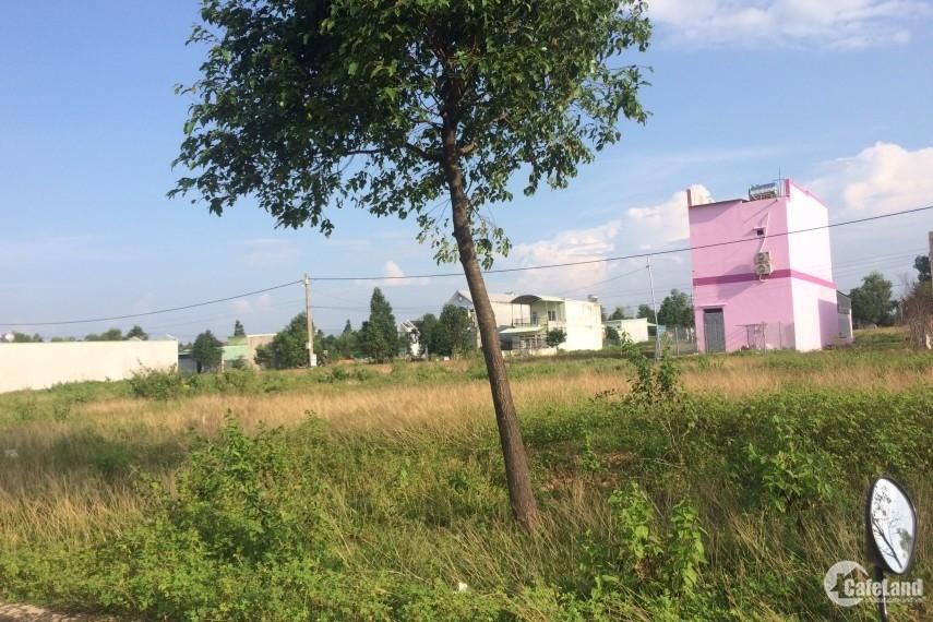 Cần tiền trả nợ, chính chủ bán gấp 2 dãy trọ và 300m2 đất tại khu CN,dân cư đông
