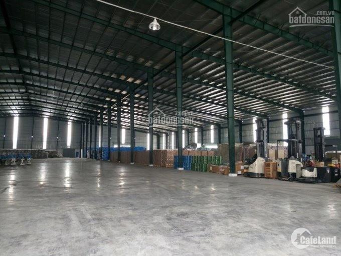 Cho thuê kho xưởng Đường số 8, KCN Sóng Thần 1, Dĩ An, Bình Dương