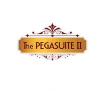 Bán căn 2pn The Pegasuite 2, địa chỉ 1079 Tạ Quang Bửu,  quận 8, tp HCM