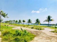 Đất biển An Bàng – Hội An - View sông Trà Quế (Cổ Cò) Liên Hệ 0944570364