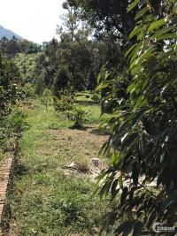 Chính Chủ Cần Bán Đất Vườn Thổ Cư Mặt Tiền Đường, Có Sổ Đỏ, Đa Huoai Lâm Đồng