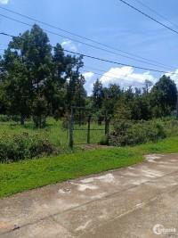 Đất Vườn Chính Chủ,Thổ Cư 200m, Công Chứng Sang Tên Ngay, Dam'ri - Đạ huoai LĐ