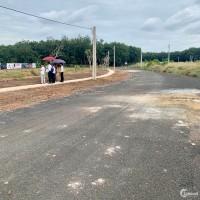 Bán đất nền cạnh TTHC huyện Đồng Phú, đầu tư siêu lợi nhuận
