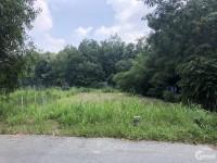 Bán đất tại Đường Gót Chàng, Xã Nhuận Đức, Củ Chi, Hồ Chí Minh diện tích 600m2 g