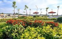 Đất Nền TTHC Bàu Bàng, Bình Dương Mặt Tiền Quốc Lộ 13 Giá 565Tr/Nền