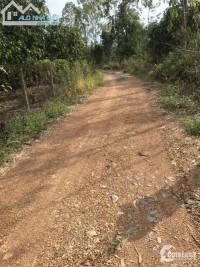 Cần Tiền Bán Nhanh Mảnh Vườn Đường Lớn Khu Công Nghiệp Định Quán Đồng Nai.