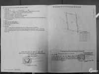 Bán đất NN 2000m2 giá 1ti75, Kênh 11-Bắc Lê Minh Xuân (chính chủ)