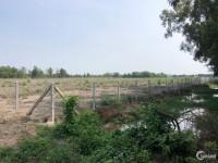 Bán 4 hecta đất vườn đường Tam Tân,Tân An Hội,Củ Chi.
