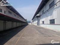 Dịch vụ cho thuê kho xưởng Đường số 8 KCN Sóng Thần 1, Dĩ An, Bình Dương