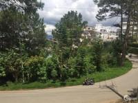 Đất Biệt Lập Thành phố Đà Lạt 380m². View Núi Rừng , ngay trung tâm