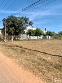 Đất mặt tiền đường nhựa Phước Thạnh,Gò Dầu, Tây Ninh.