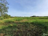Đất ruộng hẻm đối diện bệnh viện tâm thần tỉnh Bến Tre
