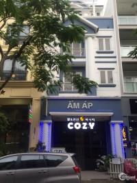 Cho thuê nhà phố khu Hưng Phước, Phú Mỹ Hưng, Quận 7 kinh doanh mọi ngành nghề