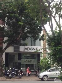 Gấp lắm rồi! Cần cho thuê căn nhà đường Phạm Thái Bường, Phú Mỹ Hưng
