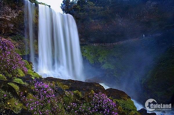 Đất nền biệt thự nghĩ dưỡng cạnh thác Dambri. Lh 0354796774
