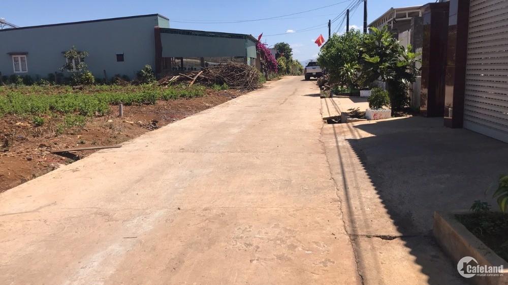 Chính chủ cần bán lô đất nông nghiệp, dt 536m2 tại Bảo Lộc, Lâm Đồng.