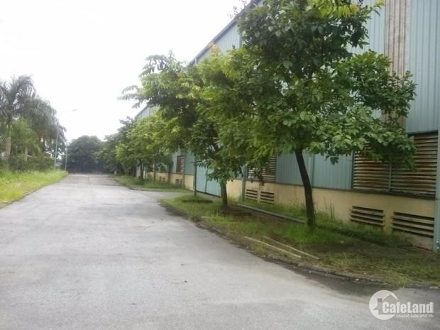 Cho thuê kho xưởng DT 1600m2 KCN Quang Minh Mê Linh Hà Nội.