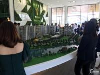 Thông tin chính thức của Chủ Đầu Tư về dự án Picity High Park Q12 KH nên biết