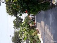 Cần bán gấp miếng đất ngay ngã tư Tân Phong Biên Hòa giá 1.685 tỷ /68 m2