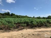 Chính chủ bán đất nền thửa 5/22 mặt đường tại xã Phước Bình