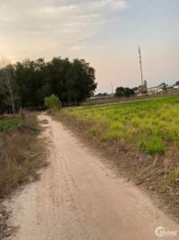cần bán đất tại xã vĩnh thanh ,diện tích 521m2.
