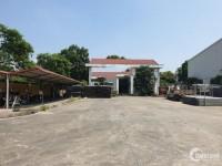 Cần bán gấp nhà xưởng DT 2,2ha cụm CN Phùng, Đan Phượng, Hà Nội.