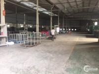 Cho thuê kho xưởng DT 2200m2 Lại Yên Hoài Đức Hà Nội.