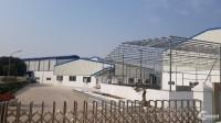 Cho thuê xưởng 2000m2, xã Long Hưng,huyện Văn Giang, giá tốt