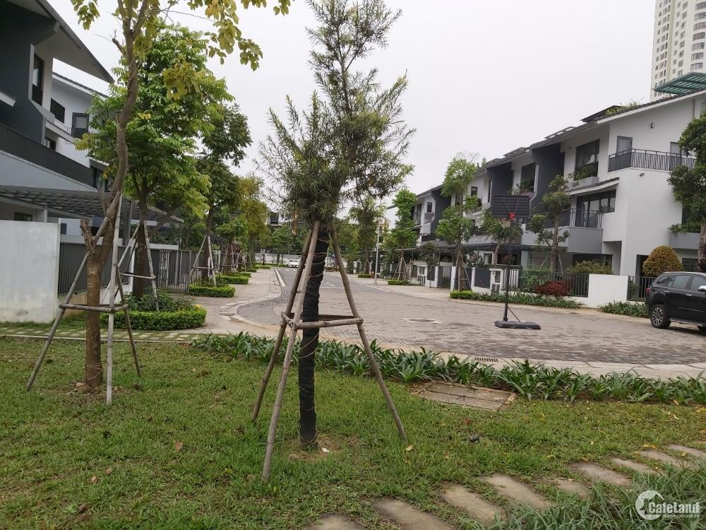 Bán gấp căn liền kề LK05 - 258 Dahlia Homes, giá siêu mềm, KĐT Gamuda Gardens, H