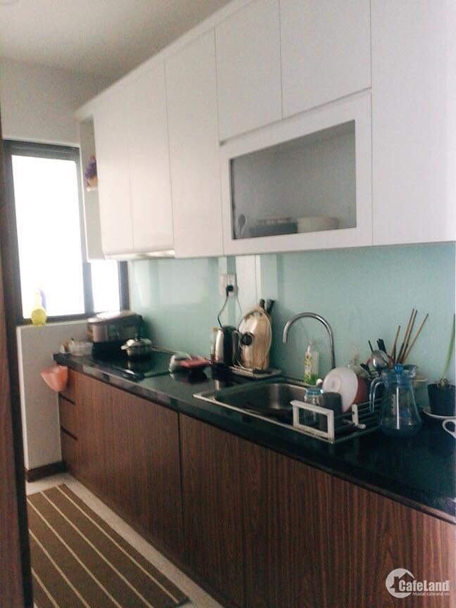 Chính chủ cho thuê căn hộ D02 - chung cư Him Lam Phú An