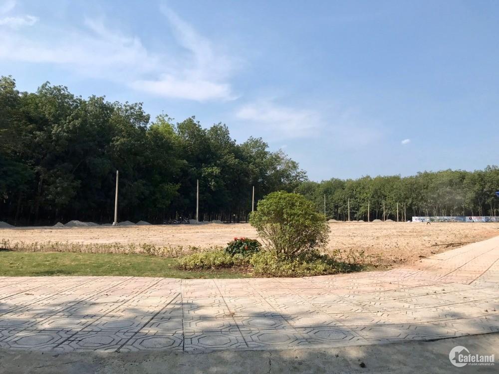 Đất Trung Tâm Bàu Bàng, Hạ Tầng Hoàn Thiện,Đường Nhựa 16m,Tỉnh  Phê Duyệt 1/500