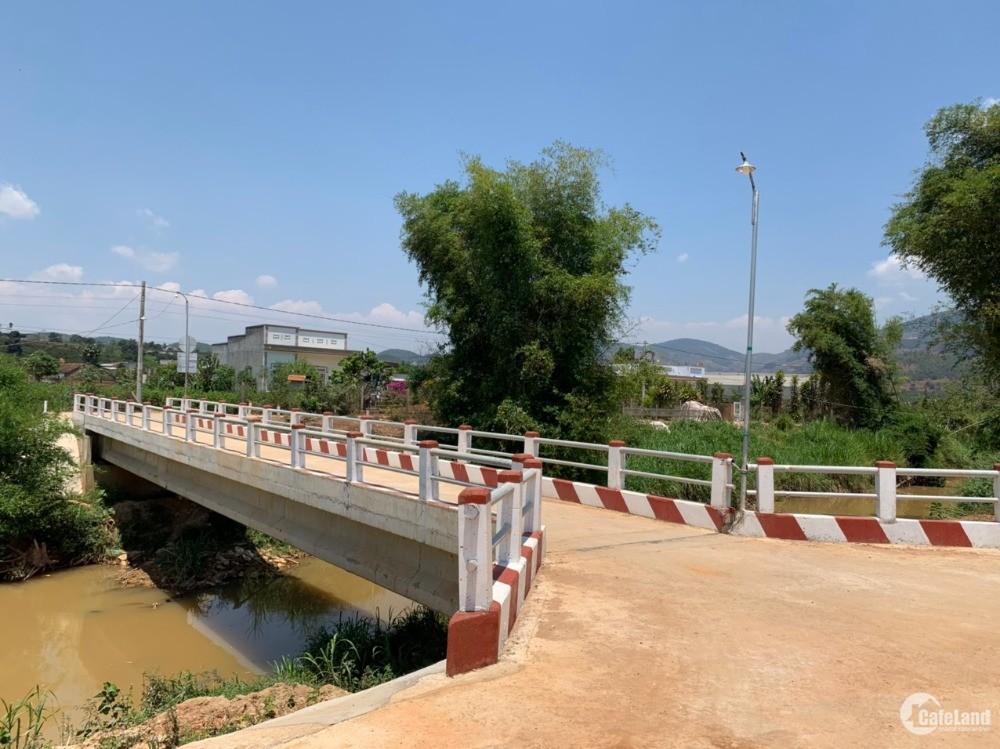 Đất view suối cách Đà Lạt chỉ 20 phút lái xe