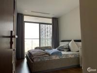 Cho thuê căn hộ tòa Park 6 Vinhomes Central Park, Bình Thạnh, 3PN đập thành 2 –