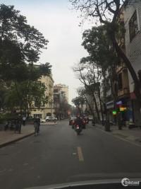 Bán nhà,phố Cửa Bắc,Trúc Bạch,Ba Đình,KD siêu đỉnh,131m2x 5 t,mt 13m,chỉ 62 tỷ