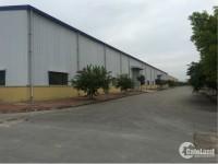 Cho thuê kho xưởng DT  2200m2, 3360m2, 5000m2, 20.000m2, KCN Đại Đồng