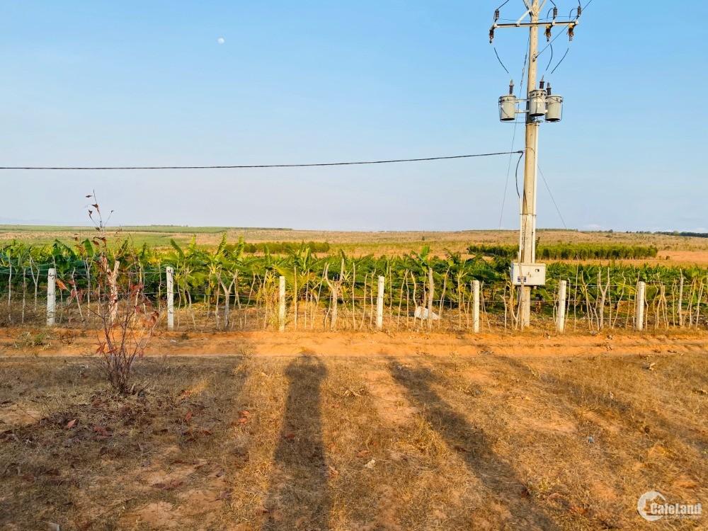 Bán lô đất nông nghiệp bình thuận sổ riêng chỉ 210tr Lh 0938677909