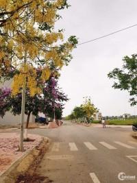 chính chủ bán đất nam Vĩnh Yên Giá đầu tư