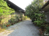 Nhà vườn Thủ Đức - mặt tiền đường gần Vành Đai 3 - full thổ cư