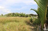 Bán đất gần mặt tiền 826C (Lê Văn Lương nối dài)Phước Lại, Cần Giuộc-0933644449