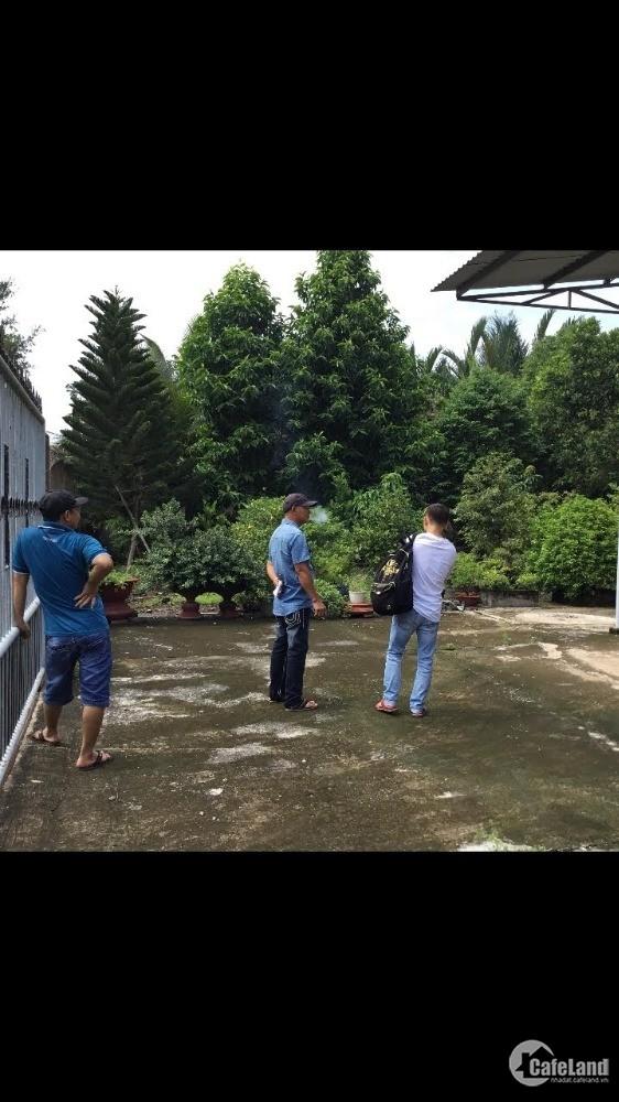 Cần bán khu đất nhà vườn tại huyện Tân Trụ, Long An