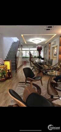 Mặt tiền Nguyễn Ngọc Nhựt, P Tân Quý, Quận Tân Phú, 130m2, 4 tầng, giá 13 tỷ4 TL