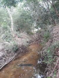 Lô đất giáp suối sát ĐH704 gần trường tiểu học Định An – Bình Dương
